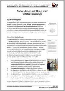 Download: ifMU-Infoblatt zur Gefährdungsanalyse: Notwendigkeit und Ablauf